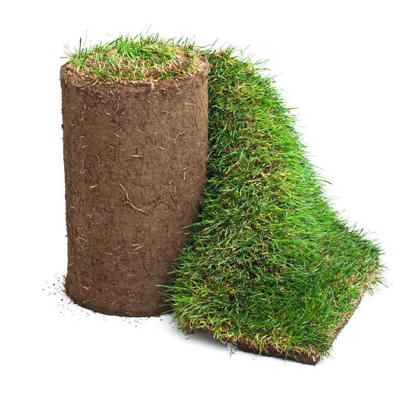 köpa färdig gräsmatta pris